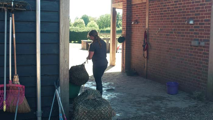 Jobs at riding stables